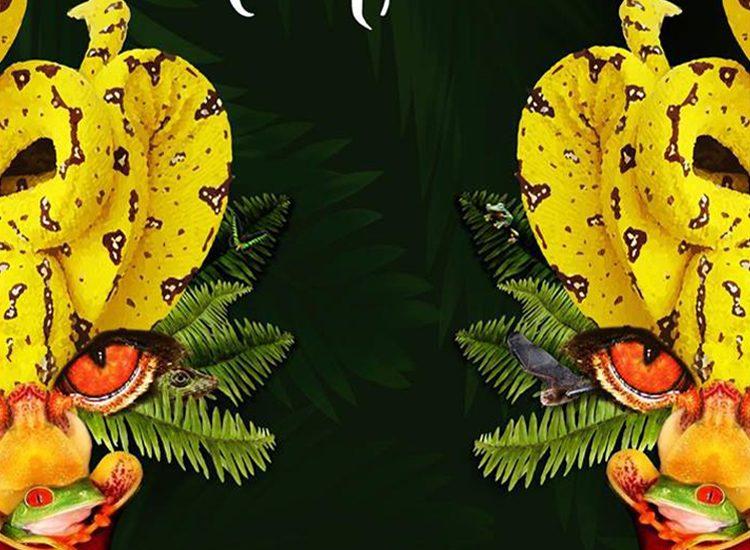 50 Filem Peribumi di International Indigenous Film Festival Kuching Buat Santapan Jiwa